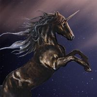 Dark-Blue Unicorn - DeinDesign
