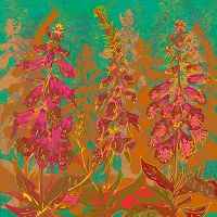 Foxgloves - Lotti Brown