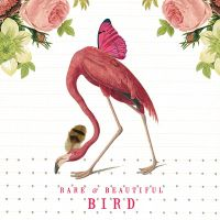 Pink Flamingo Dream - Libby McMullin