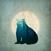 Blue Bear - Jessica Broton