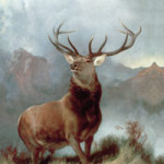 Monarch of the Glen - Bridgeman Art