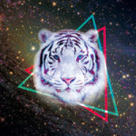 Galaxy Tiger - DeinDesign