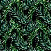 Go Tropical - DeinDesign