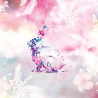 Splash the Bunny - DeinDesign