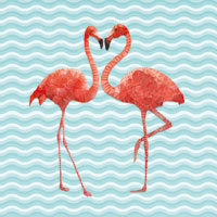 Flamingo Dance - Ancello