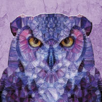 Purple Owl - Ancello