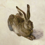 Hare - Bridgeman Art