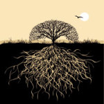 Roots of a Tree - DeinDesign